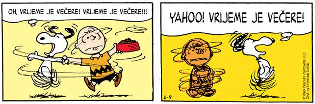 stripVL35-peanuts
